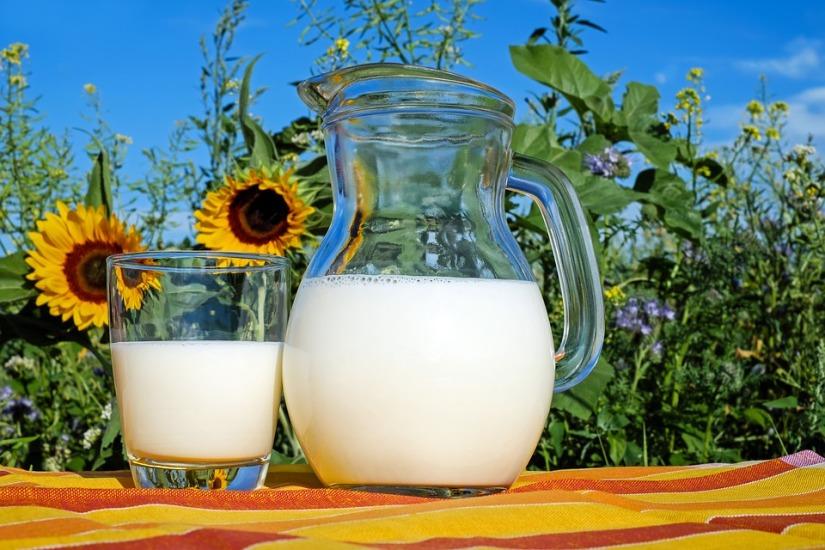 Here Is Why Organic Milk Is Better for You Than Regular Milk